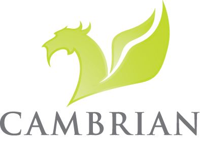 Cambrian Solutions Inc. Retina Logo